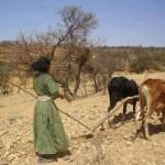 women_farmer
