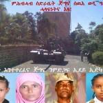 Assenna_tank_wediali_fund