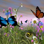 Pictures-Of-Butterflies-With-Flowers