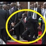 Mugabe_falls
